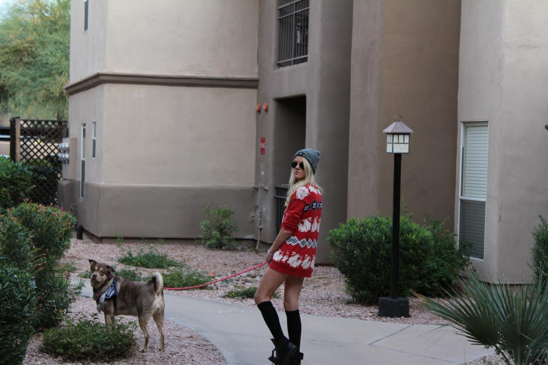 Sunday AM Walk with Chloe